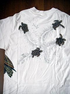 turtle_back2.JPG
