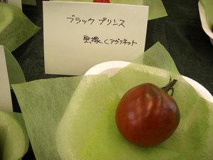 tomato5.jpg